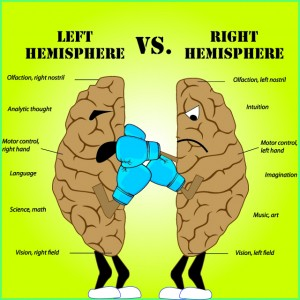 left brain vs right brain Maybe you're right-brained: creative, artistic, an open-minded thinker who perceives things in subjective terms or perhaps you're more of a left-brai.