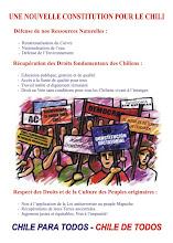 Chilenos en Francia: Una nueva Constitución para Chile