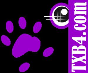 txb4.com