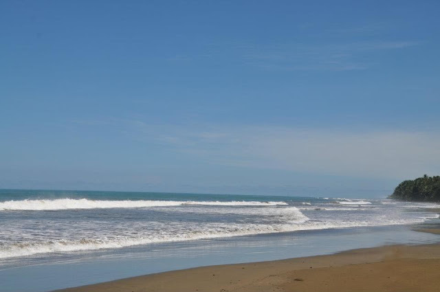 Picture of Ballena Beach, Costa Rica