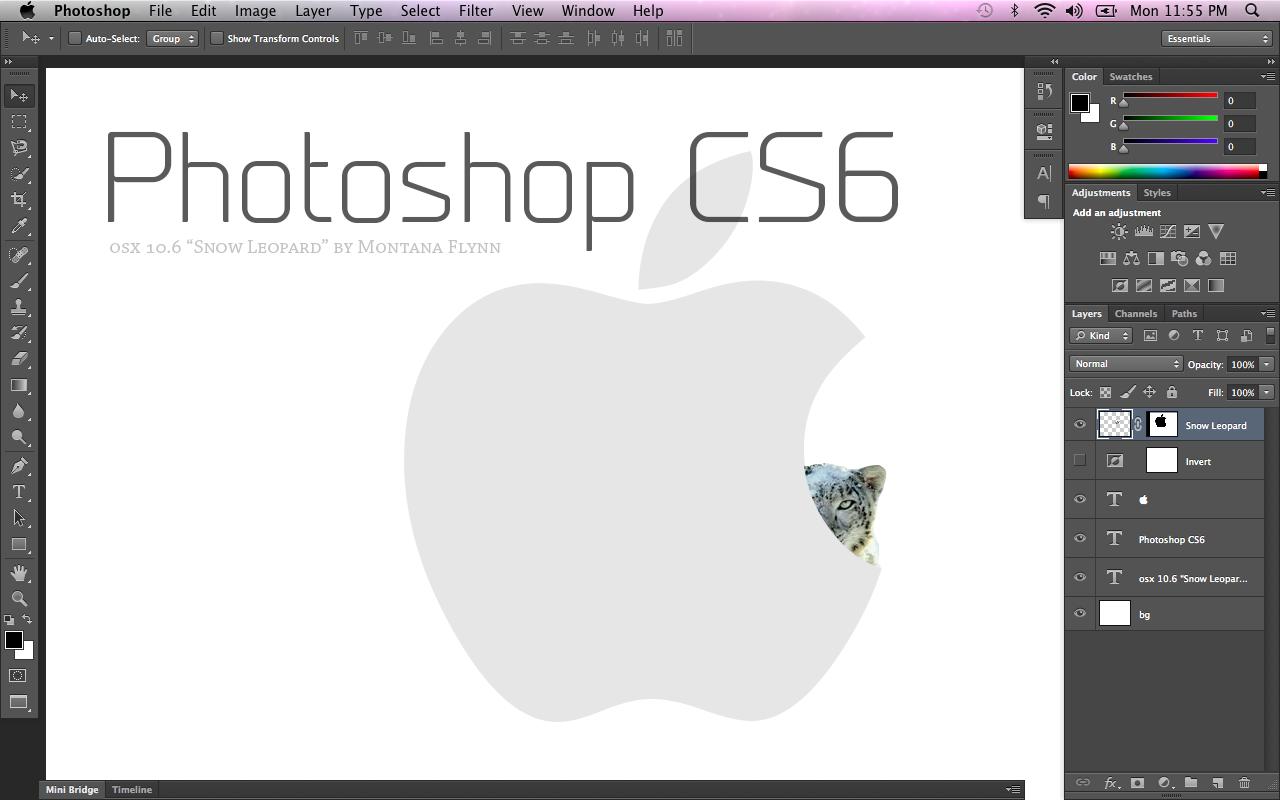 adobe programs for mac