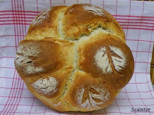 Fonott kenyér, fázisfotókkal.