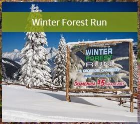 Winter Forest Run 2015