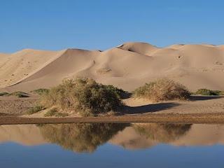 Pengertian Sedimentasi & Bentuk Permukaan Bumi Akibat Sedimentasi
