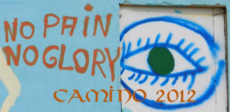 "CAMINO DE SANTIAGO 2012 <br>""No pain no glory"""