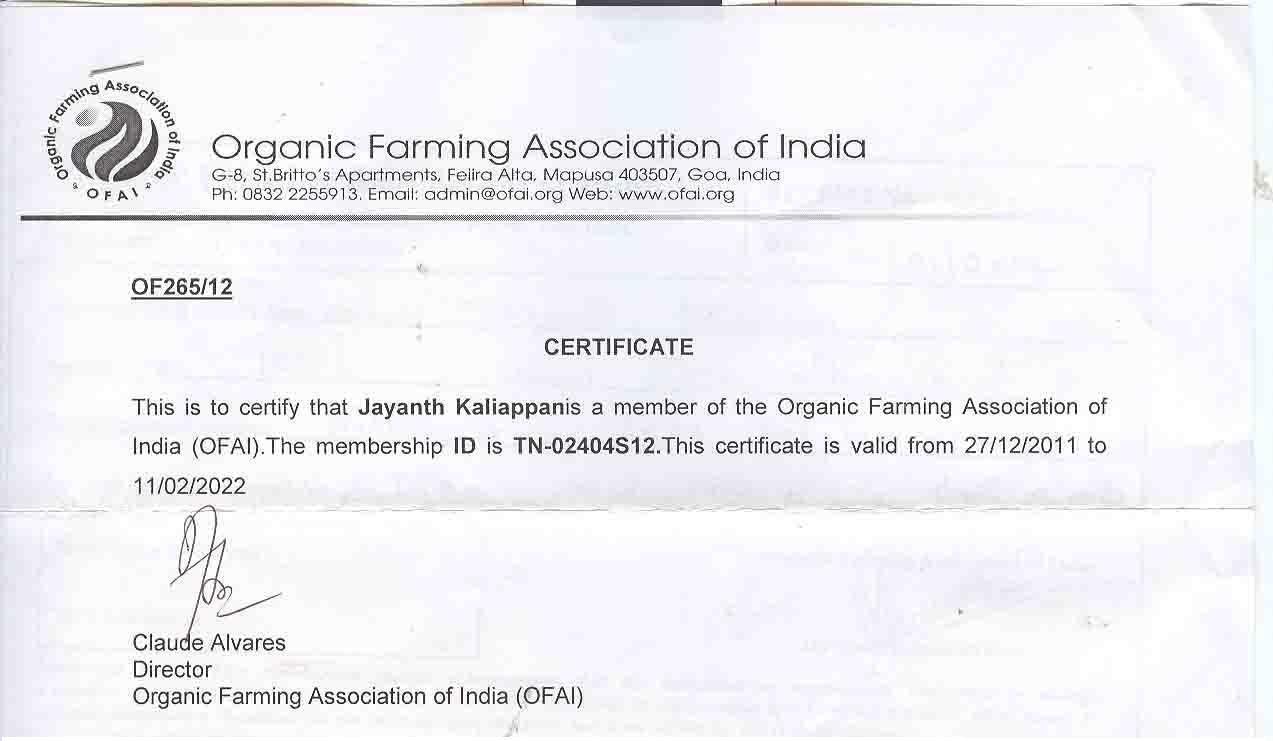 Organic Mangoes Organic Certificate