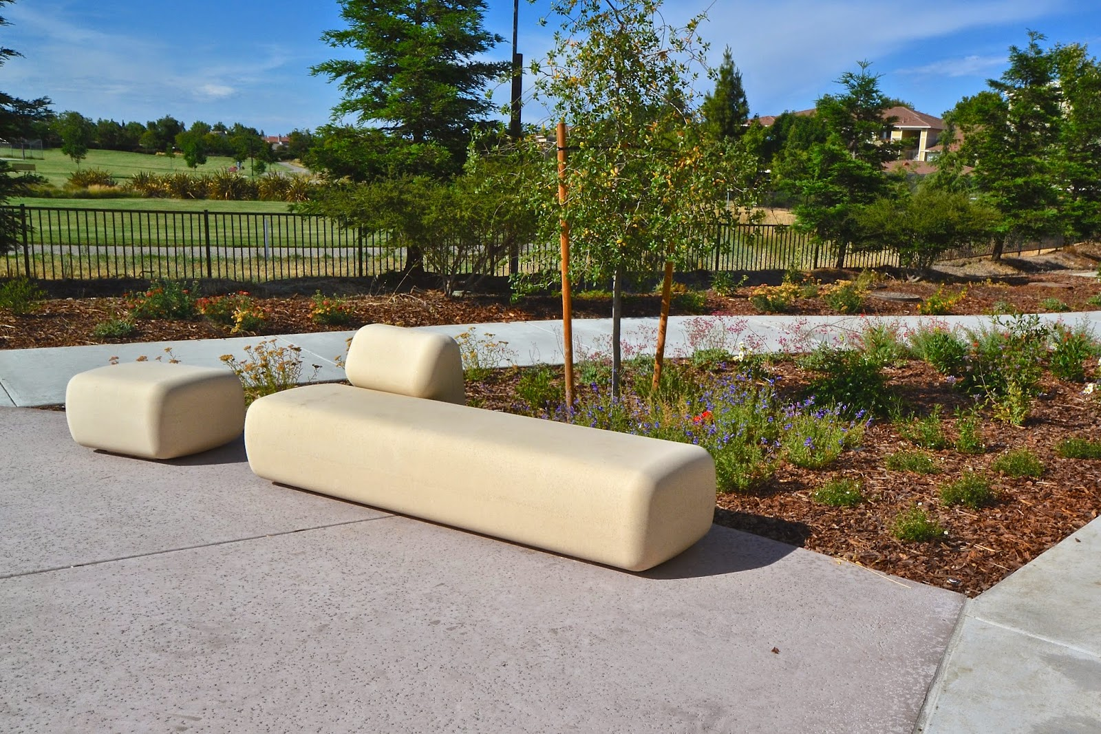 Amazing California Natives, Verdura Planters U0026 Fortunato Site Furniture