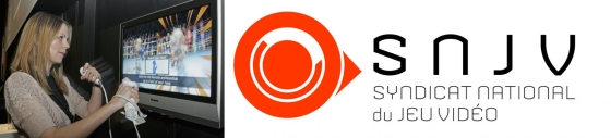 Etude SNJV : le jeu vidéo en France en 2011