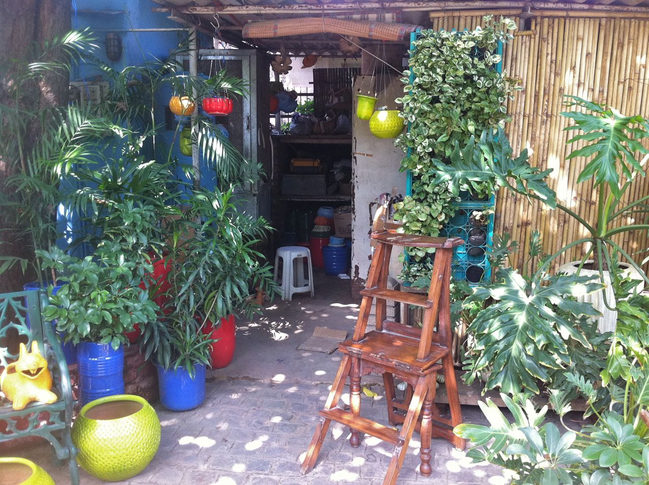 As You Walk Into This Garden Cum Shop, You Will Be Greeted By Splashes Of  Colour Amongst The Various Shades Of Green.