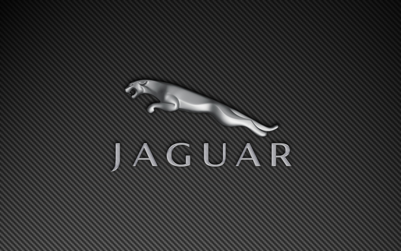 http://2.bp.blogspot.com/-kul7vQIv5sI/UMys-0mbUOI/AAAAAAAAJgg/h0NZ05z7zkw/s1600/jaguar-leaper-logo-carbon-fiber-1440x900.png