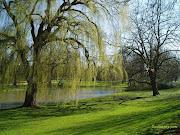 Portal Info: As mais lindas paisagens do mundo (paisagens rvores)