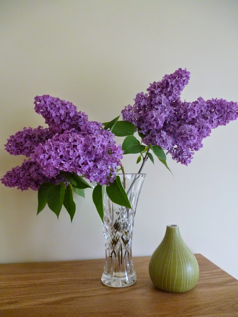 Lilac picked from the garden