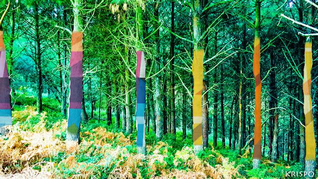 arboles pintados con vivos colores en jaizkibel