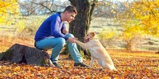 Kriteria Cowok Yang Memelihara Anjing