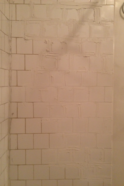 Tongue In Chic Making An Old Ass Shower Look New