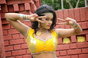 Item Girl Nisha hot photos-thumbnail-19