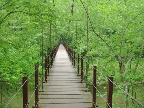 Hiking trails georgia swinging bridge out