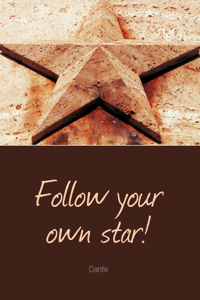 visual quote - image quotation for INDIVIDUALITY - Follow your own star! - Dante