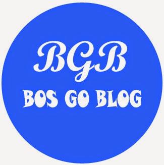 tips menjadi bloggers profesional