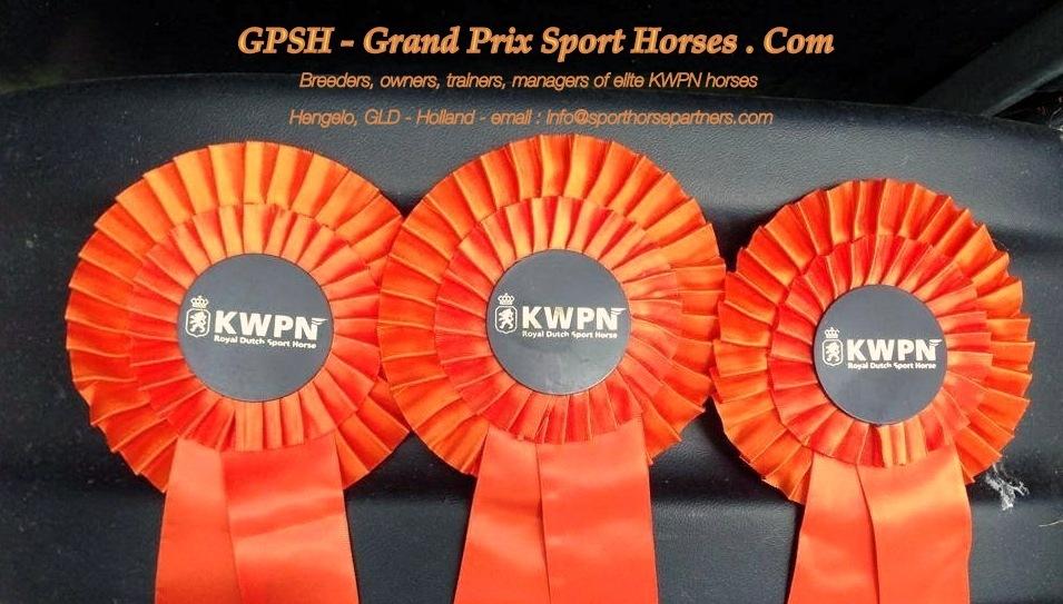 Grand Prix Sport Horses . Com