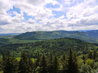 Blick vom Mahlbergturm Richtung Südosten