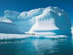 misteri kehidupan di kutub utara