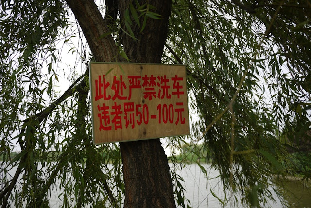 Chinese sign posted on tree