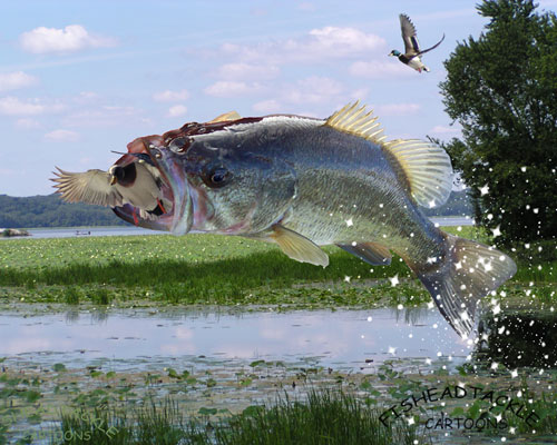 bass fishing pc wallpaper - photo #35