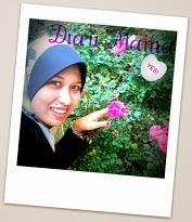 My princess diary