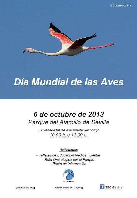Día Mundial de las Aves 2013 SEO-Sevilla