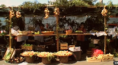 Vídeo VI | Festa do Pêro  -            Ponta do Pargo