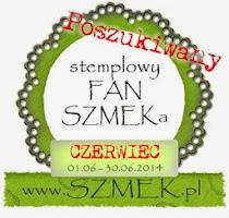 Stemplowy FAN SZMEKa