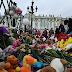 Identifican la bomba que destruyó el avión ruso Airbus A321 donde fallecieron 224 personas