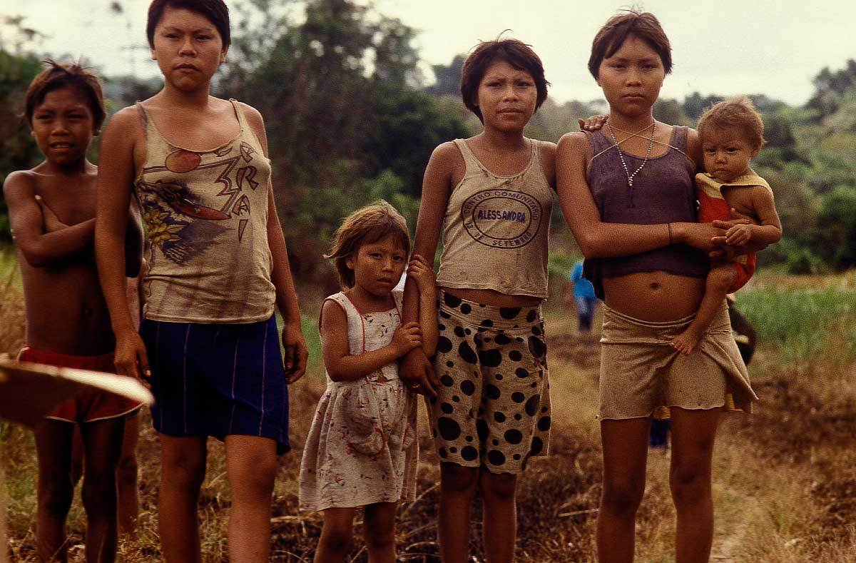a study on the yanomamo people of the amazon rainforest This is good resource to investigate how tribes use the amazon rainforest students compare tribes and compare lifestyles.