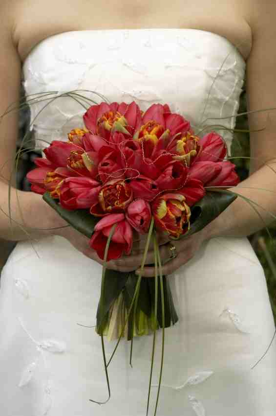 Bridal Bouquet Plant Images : Wedding bouquet