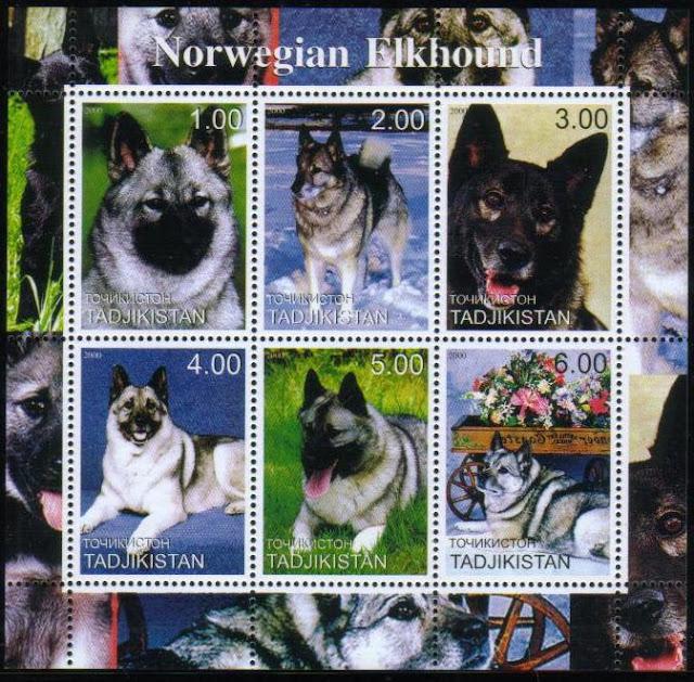 2000年タジキスタン共和国 ノルウェジアン・エルクハウンドの切手シート