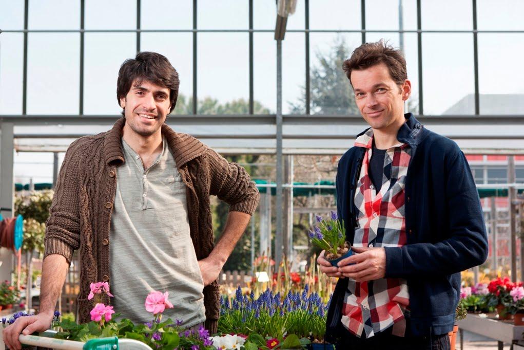 Giardinieri in affitto al via la nuova stagione dal 17 - Giardinieri in affitto consigli ...