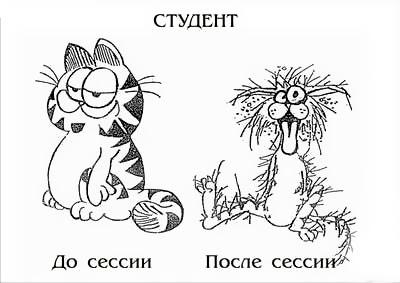 studentki-posle-sessii-zhenskaya-vagina-kakaya-bivaet