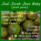 Jeruk Java Bb