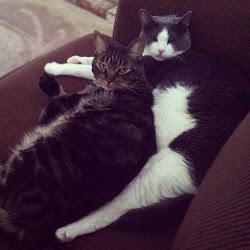 Penny & Tigger Gonzales