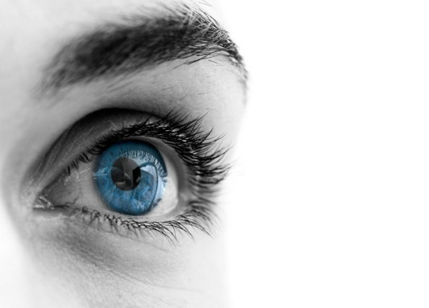 Eye Exercises William Bates : The Art Of Obtaining An Affordable Optometrist