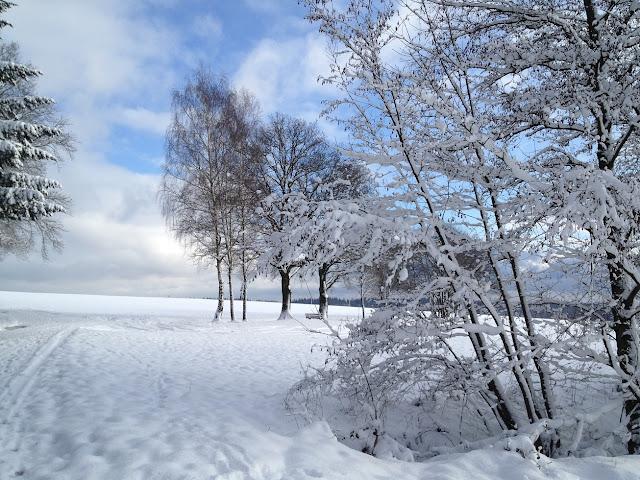 Winter mit Frost, Eis und Schnee
