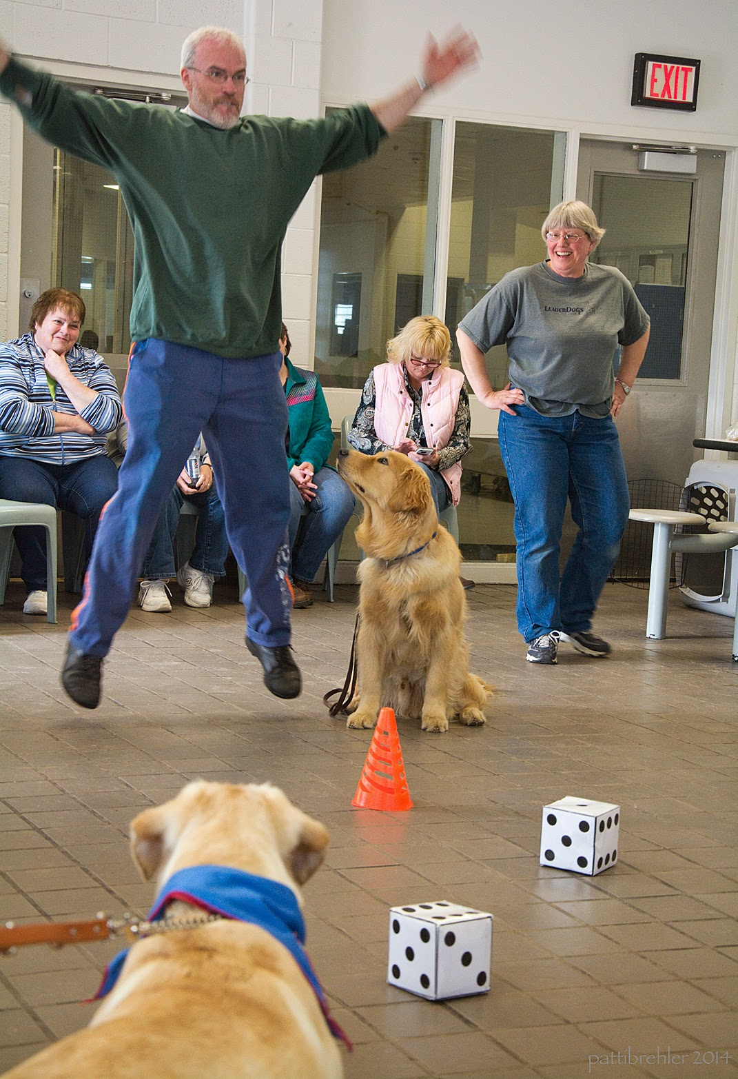 A different man is in mid jumping-jack with his feet off the floor and his arms spread wide. He is the one wearing blue pants and a green sweatshirt. A golden retriever is sitting at his left side looking up at him. Another  yellow lab is standing in the foreground, looking toward the man and golden retriever. The lab is being held by a leash and is wearing a blue bandana. There is an orange cone in front of the golden retriever and a pair of large six inch dice on the floor too. Three women are sitting behind the man and one woman, dressed in blue jeans and a grey t-shirt with her hands on her hips, is standing behing and to the right.