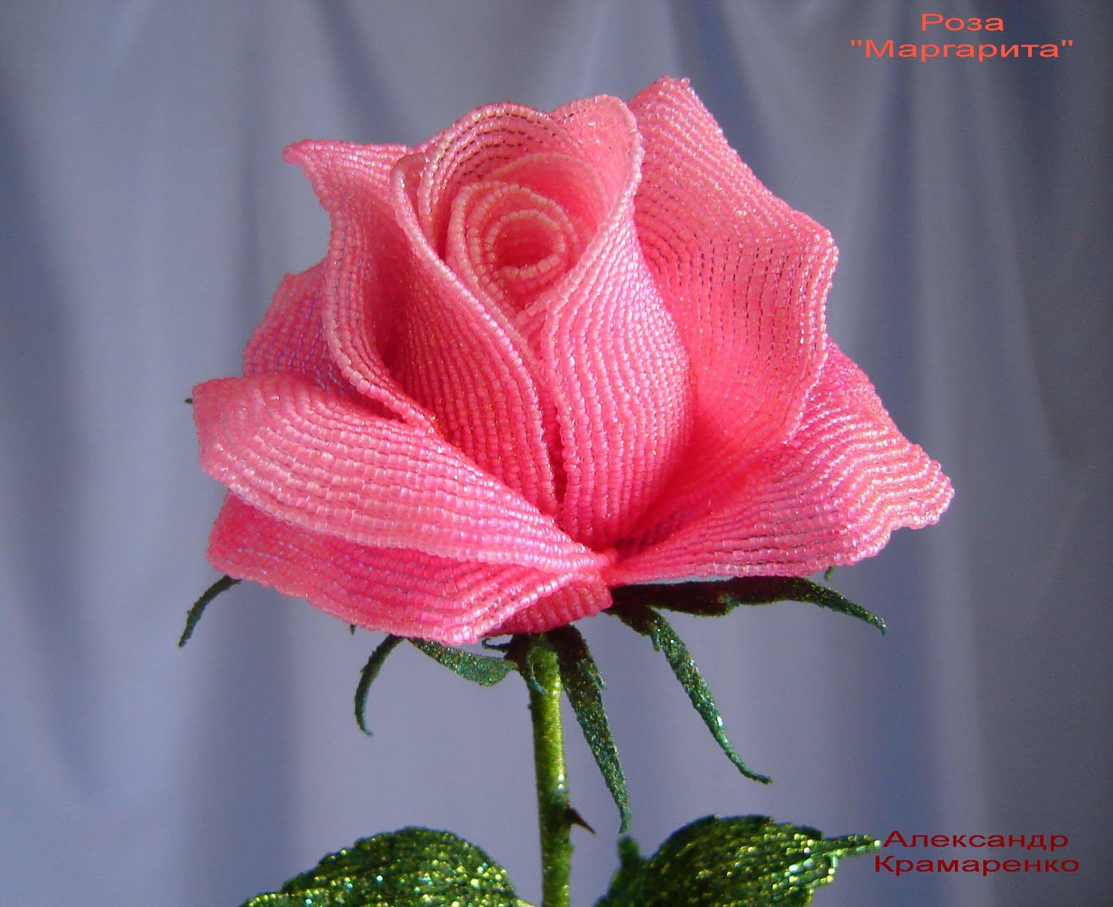 Большая роза из бумаги 56