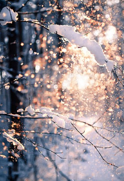 snow beautiful