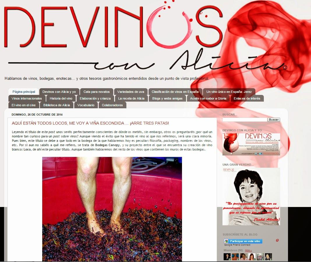 Entrevistas a blog de vinos