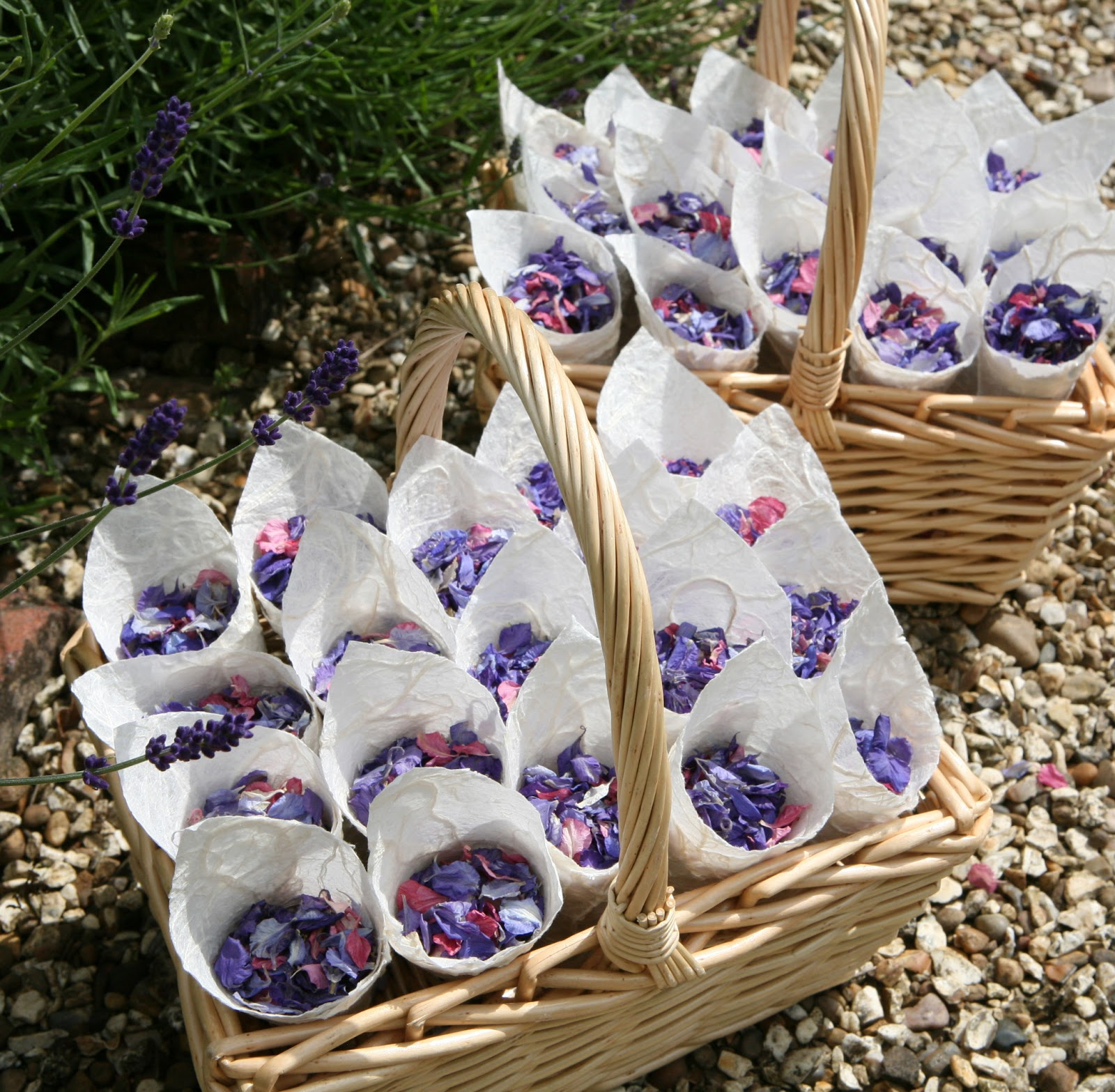 The confetti blog choosing your petal confetti tips advice rectangular baskets textured cones and delphinium petals izmirmasajfo