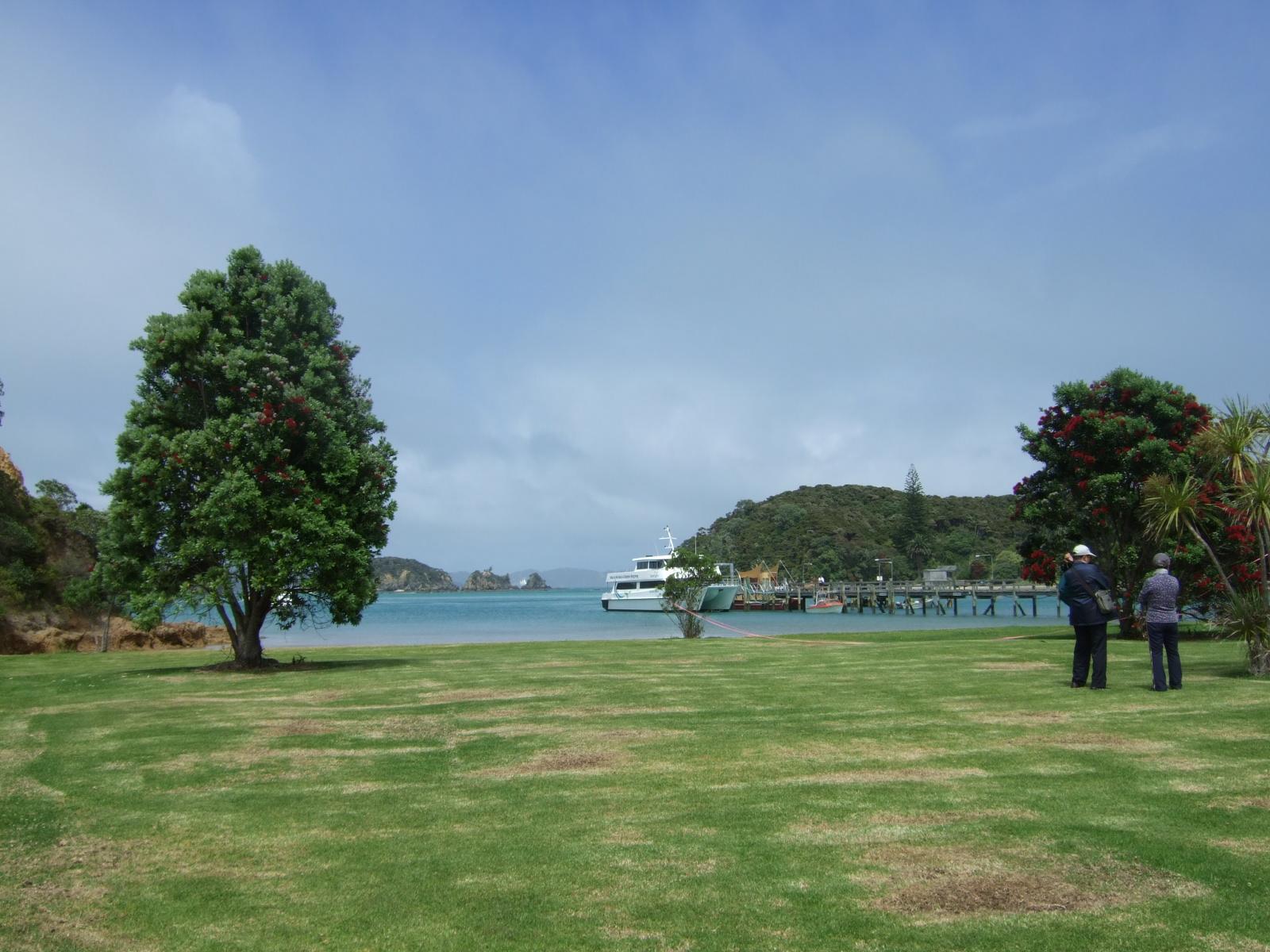 ウルプカプカ島,芝生,浜,港,桟橋,NZ〈著作権フリー無料画像〉Free Stock Photos