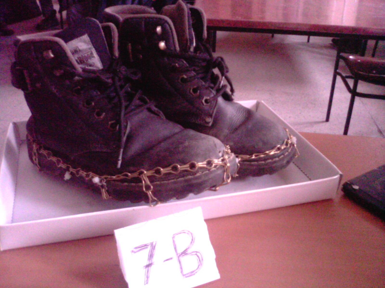 Kar ayakkabısı