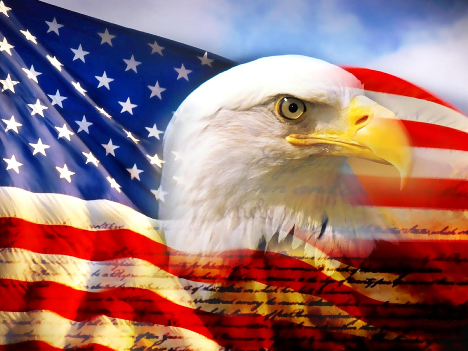 bald eagle head and american flag